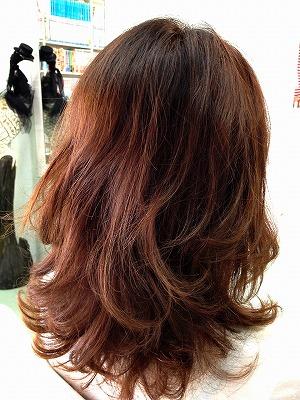 9月アップ髪型1 (56)