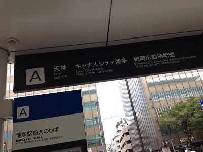 10 3 雑 (2)
