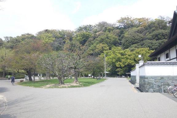 徳島城外から