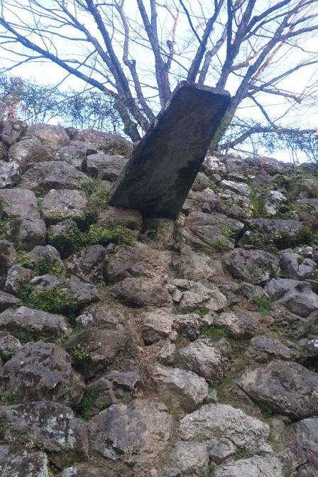 高知城石雨どい