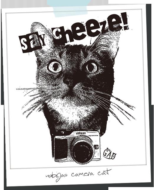 Nobigao カメラ猫