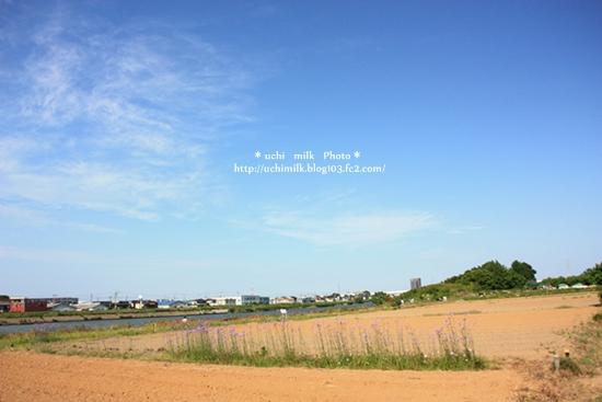 IMG201306_4798.jpg
