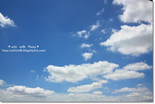 IMG201306_5071.jpg