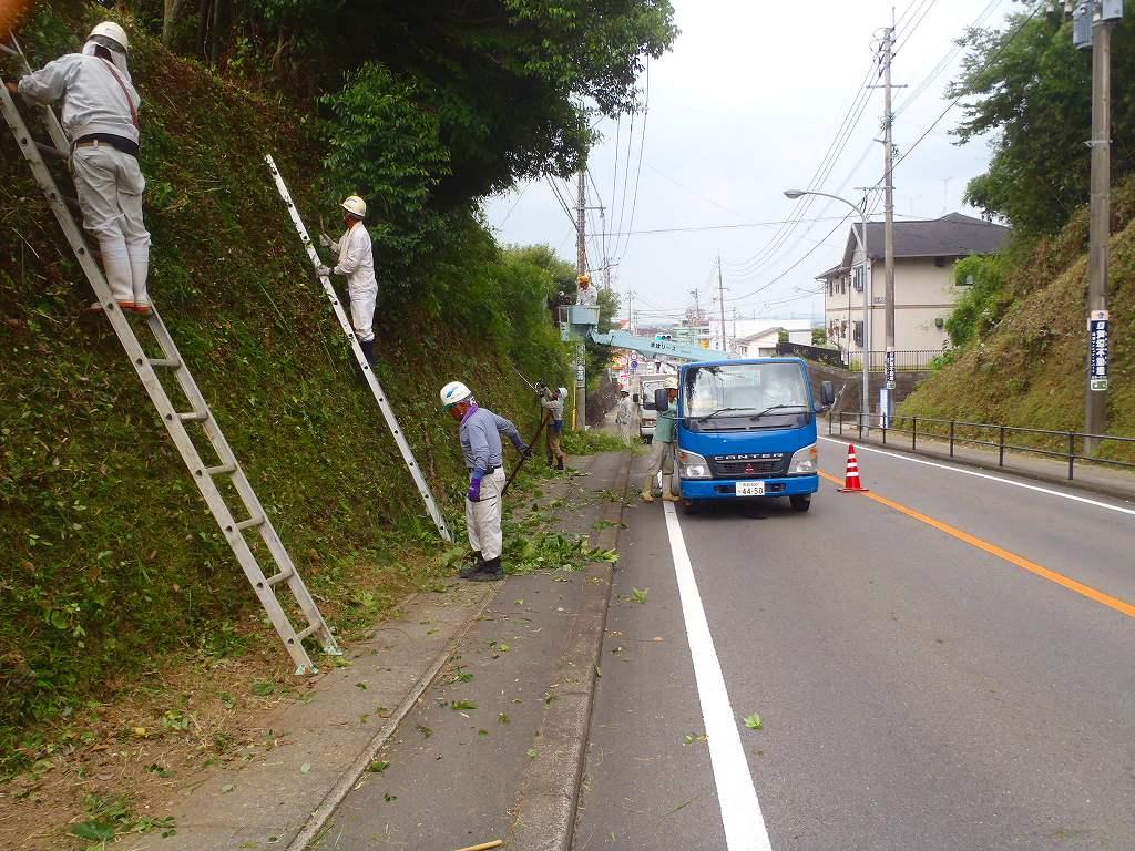 20130727koushokusakari (29)
