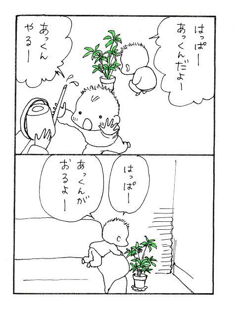 201415b.jpg