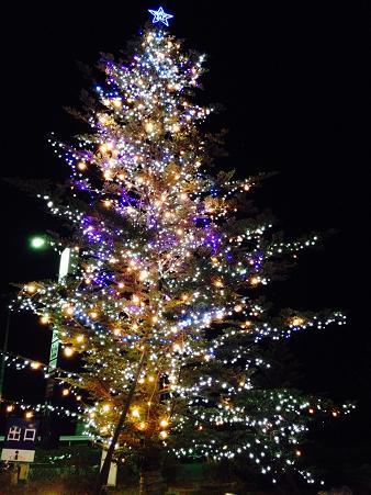 2013christmas (2)