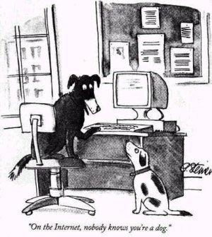 Internet_dog.jpg
