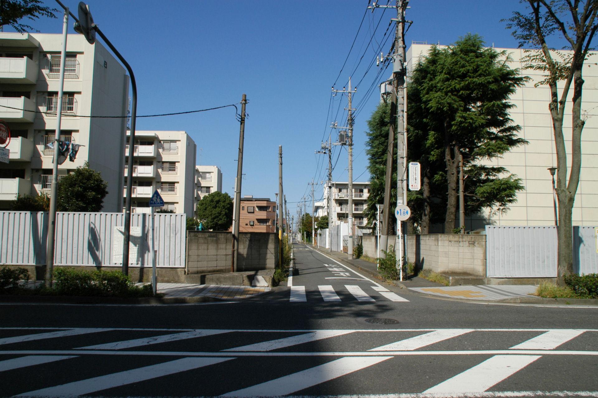 kosugi13100086.jpg
