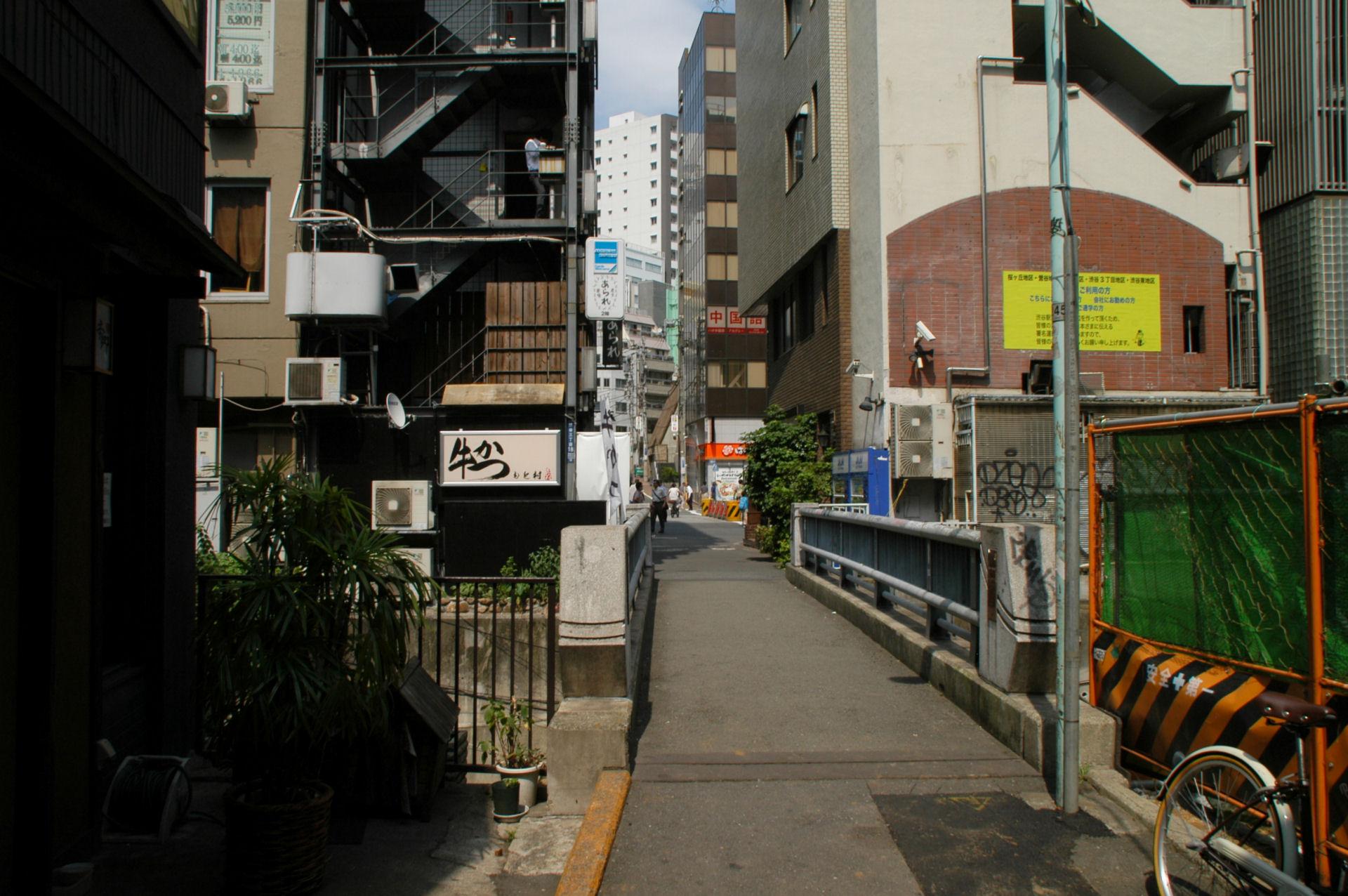 shibuyaso13080128.jpg