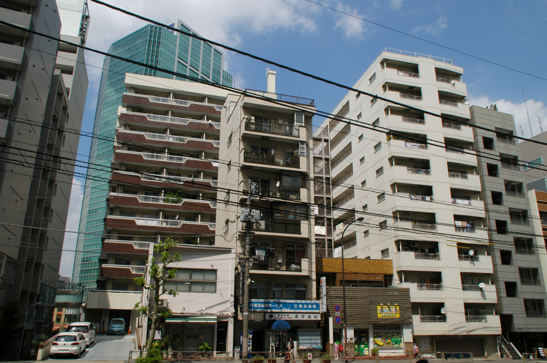 shiro13080027.jpg