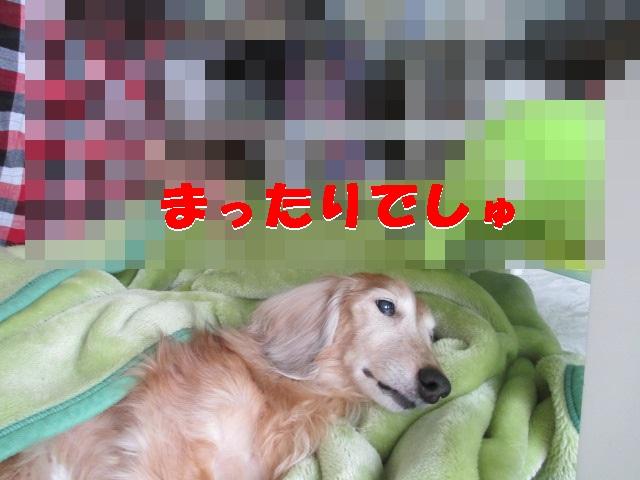 IMG_1299.jpg