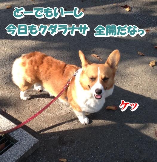 IMG_3474.jpg