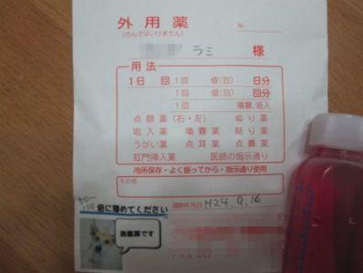 0916-nuri_20130517163742.jpg