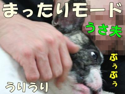 1-2_20130520140424.jpg