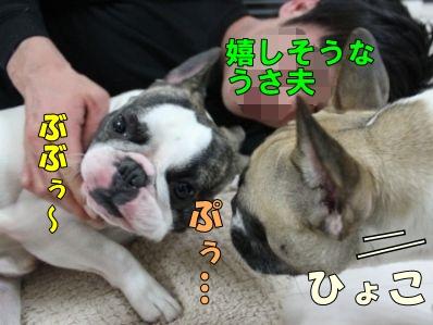 3-1_20130520140427.jpg