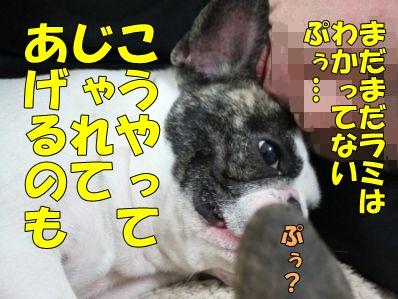 6-1_20130520140445.jpg
