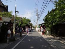 9:15 金鱗湖近くから湯の坪街道を歩きます。