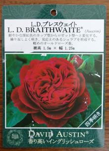 L.D.ブレスウェイト 表