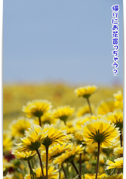 20130508_023.jpg