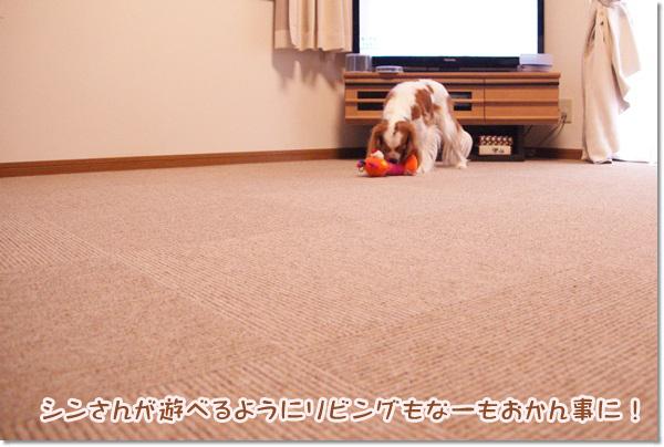 20130528_044.jpg