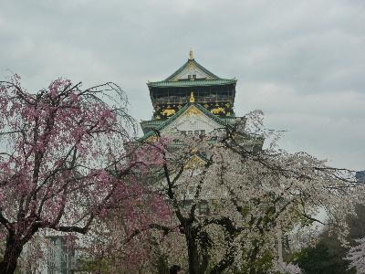 大阪城の桜9