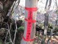 縦走路の標識