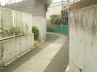 midori1-21.jpg
