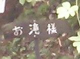midori1-27.jpg