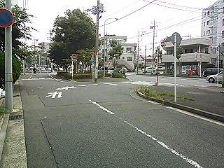 midori2-1.jpg