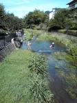 南沢緑地 子供たちの川遊び