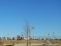2014正月・水元公園1