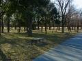 2014正月・水元公園2