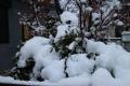 2013:01:14東京大雪2