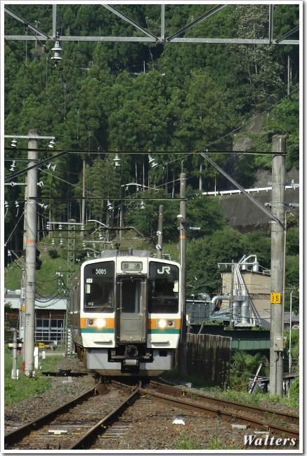 DSC01414.jpg
