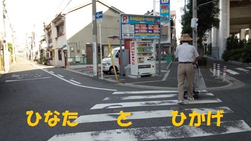 PAP_0689.jpg