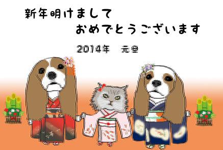 !cid_C989785E01124DEC83A3E0463F144C21@SetsukoPC.jpg