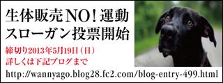 noslogantohyo2_320x120.jpg