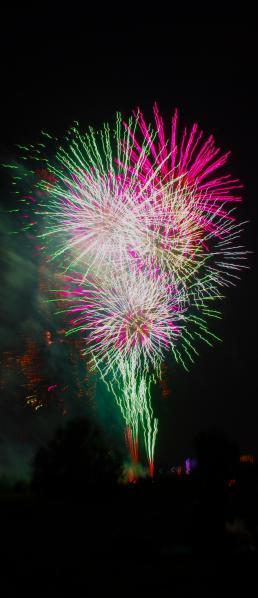 花火 / Firework