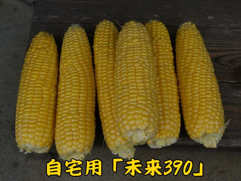 1dc0630c2.jpg