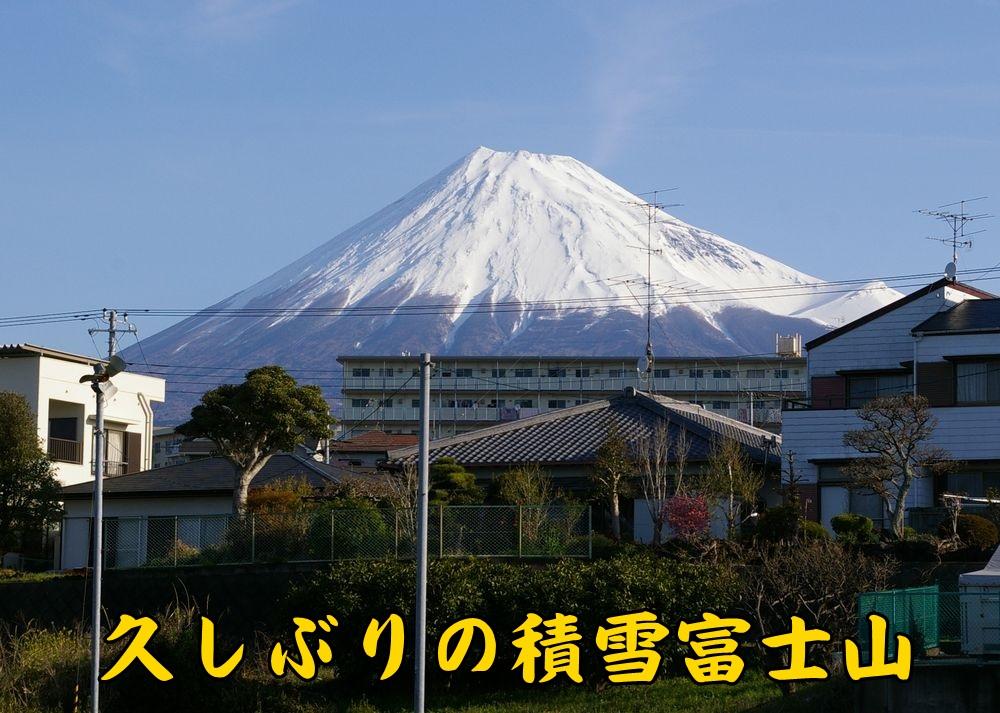 1fujisan0404c1.jpg