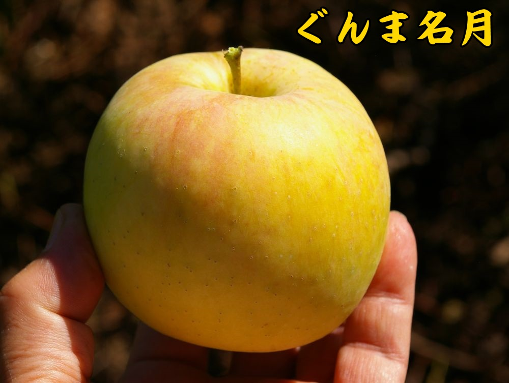 1gunma0928c1.jpg