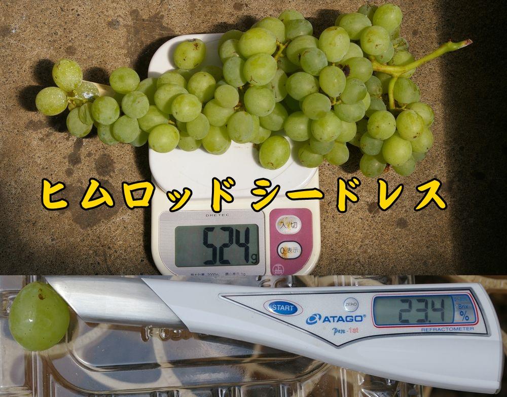 1himurod0818c2.jpg