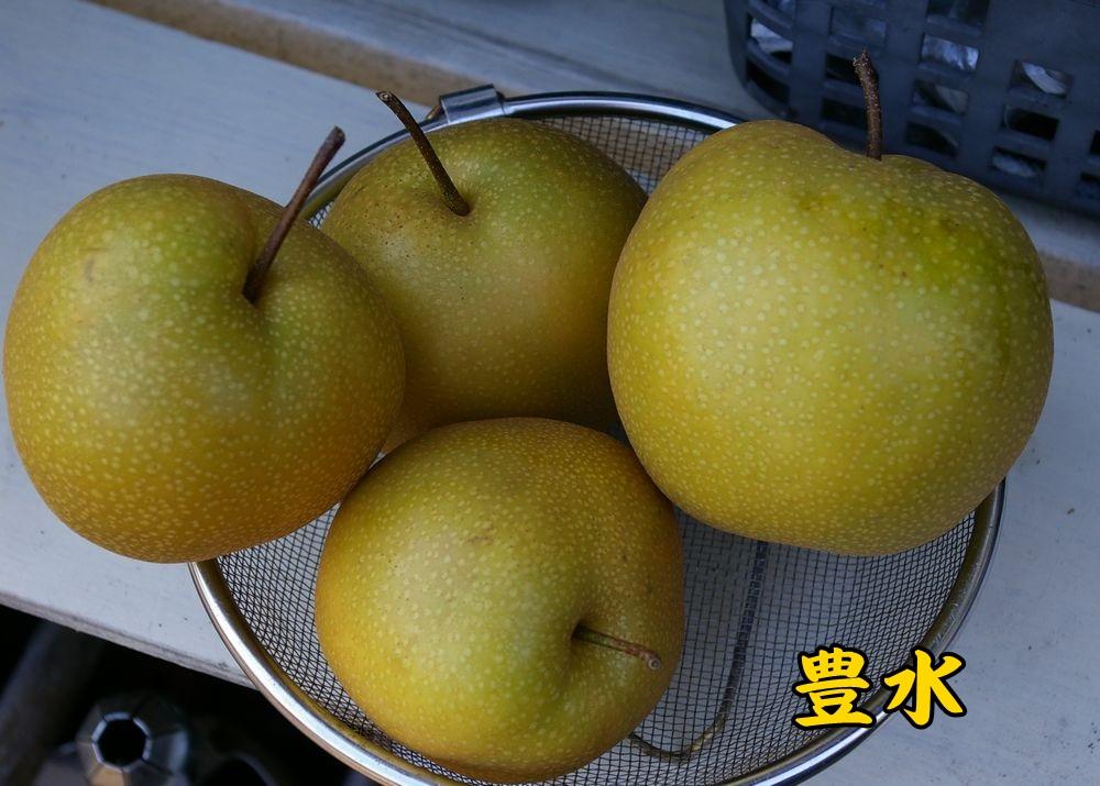 1housui0903c1.jpg