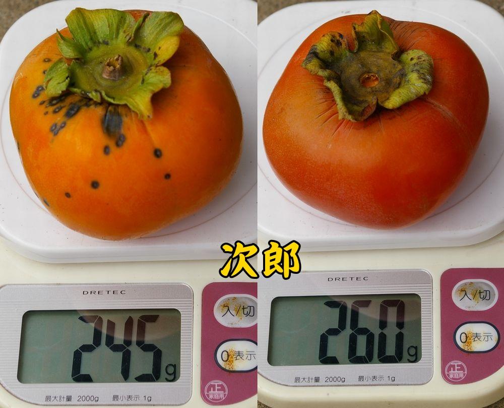 1jiro1014c4.jpg