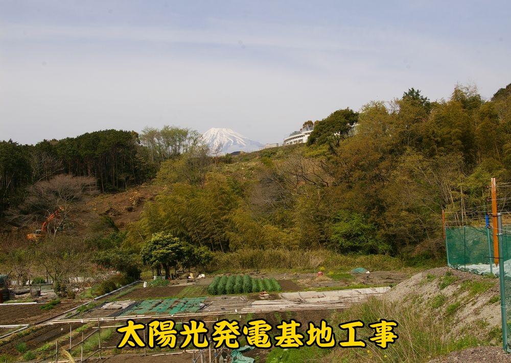 3soler0401c1.jpg