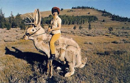 jackalope-riding.jpg