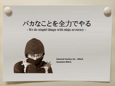 ninja-bak.jpg