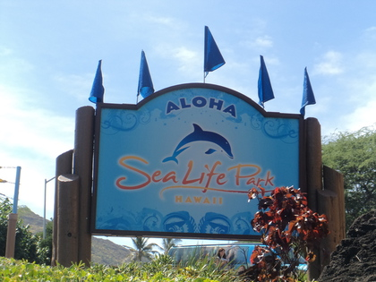 sea life park1