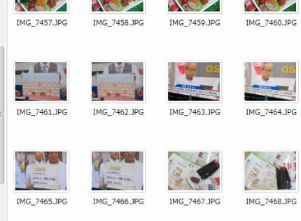 130730_brush.jpg