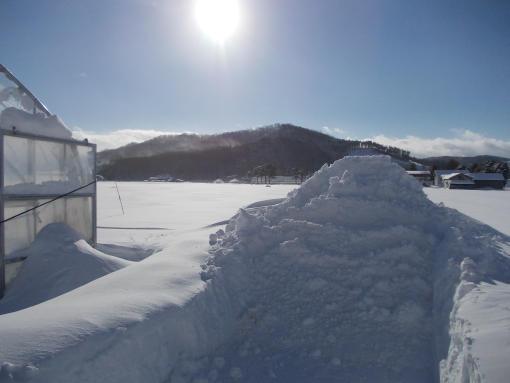 20131229_押し付けた雪の山
